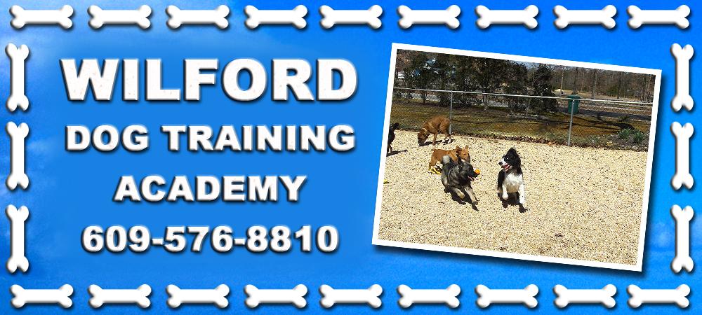 Wilford Dog Training Academy